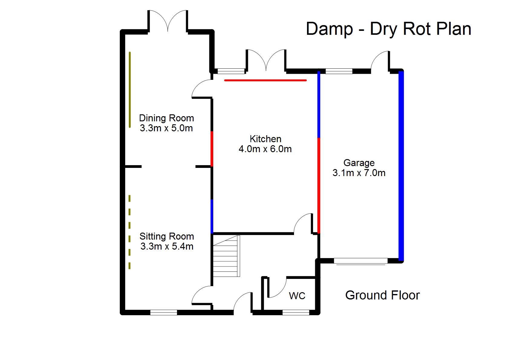 DampDryRot1